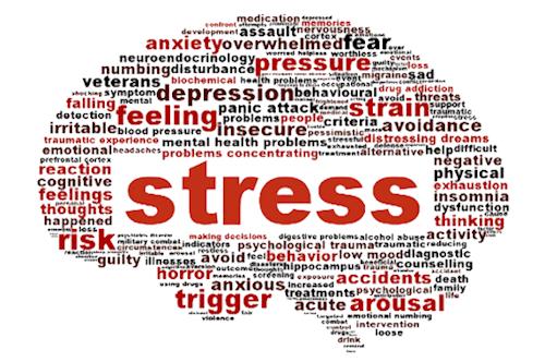 Word Cloud 'Stress'